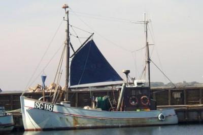 SG 90116 –  TONNI – ©FiskerForum - Foto: FiskerForum
