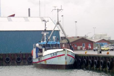 L 90060 –  GOTLAND – ©FiskerForum - Foto: FiskerForum
