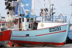 HM 83 –  VESTFJORD – ©FiskerForum - Foto: FiskerForum