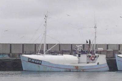 HM 90495 –  HAVMÅGEN – ©FiskerForum - Foto: FiskerForum