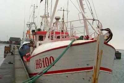 HG 90100 –  HVALNES – ©FiskerForum - Foto: FiskerForum