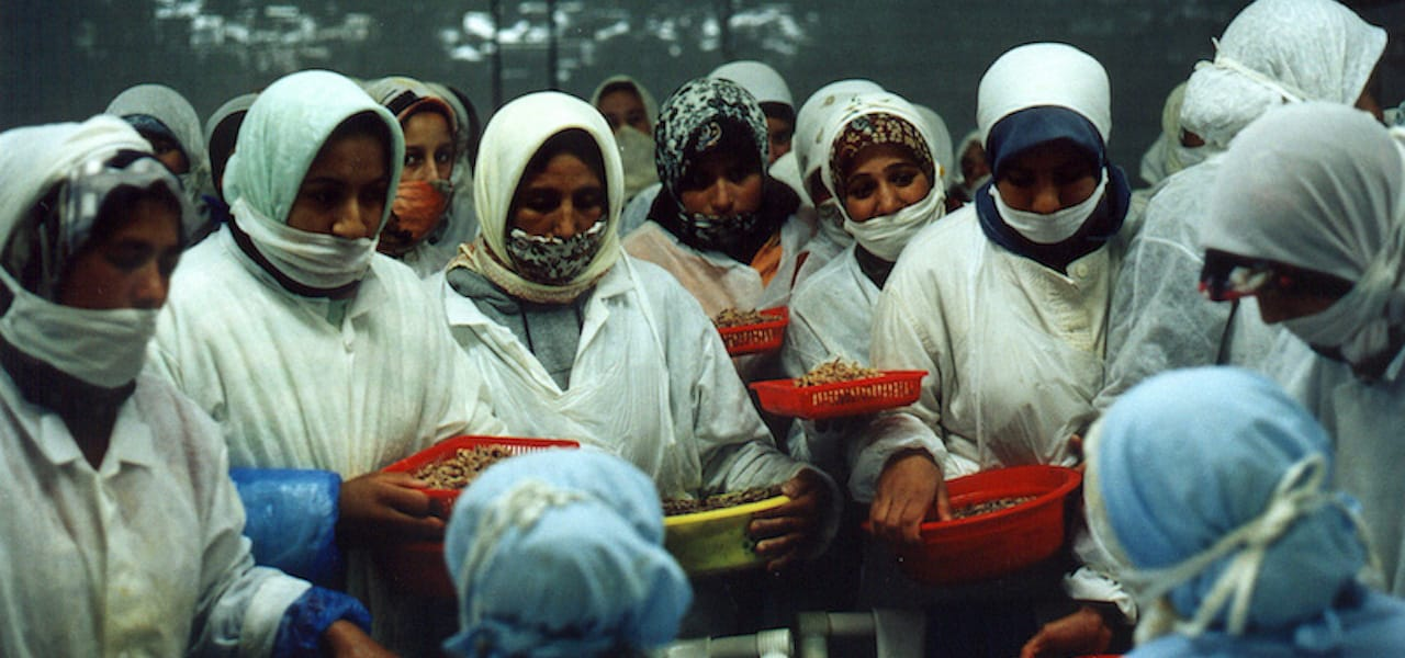 WSI calls on the seafood industry to wake up and recognise gender equality