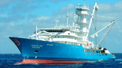 Spanish fleet's tuna FIP enters second year