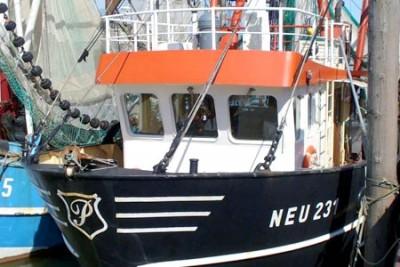 NEU 231 –  Medusa – ©FiskerForum - Foto: AndreasS