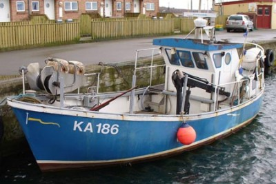 KA 186 –  Nellie – ©FiskerForum - Foto: AndreasS