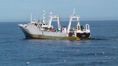 Spanish trawler arrested in Argentina