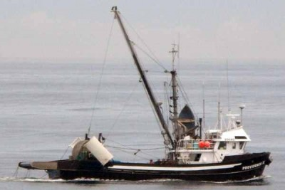 20080 –   – ©FiskerForum - Foto: Atlantic-Mackerel