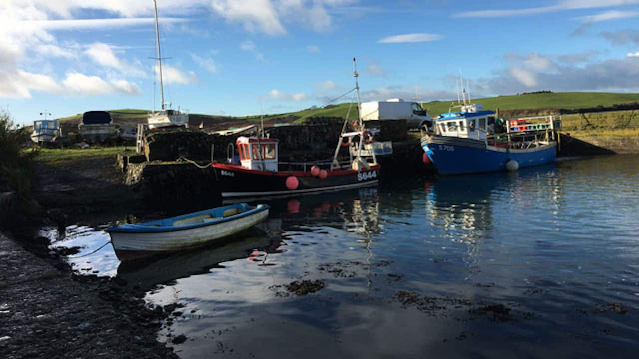BIM survey seeks accurate data on importance of inshore fisheries