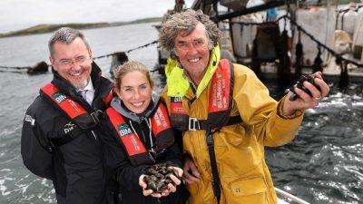 Irish rope-grown mussels get MSC bluelabel