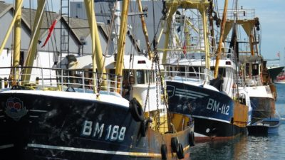 Thailand seeks Brixham's trawl technology