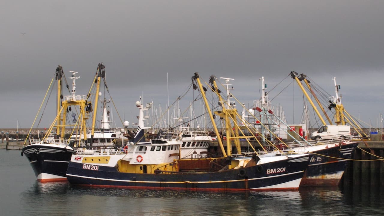 UK federations consider EU fisheries deal implications