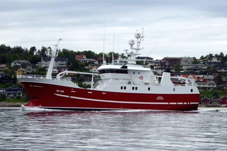 Busy fishing vessel market