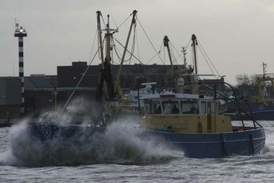 HA 32 –  WALRUS – ©FiskerForum - Foto: Barend-from-Harlingen