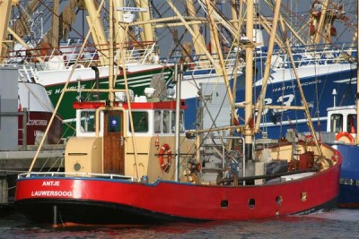WL 25 –  ANTJE – ©FiskerForum - Foto: Barend-from-Harlingen
