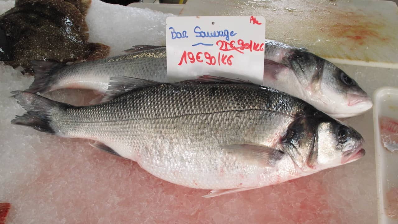 Read more about the article European consumers stick with seafood, despite Covid