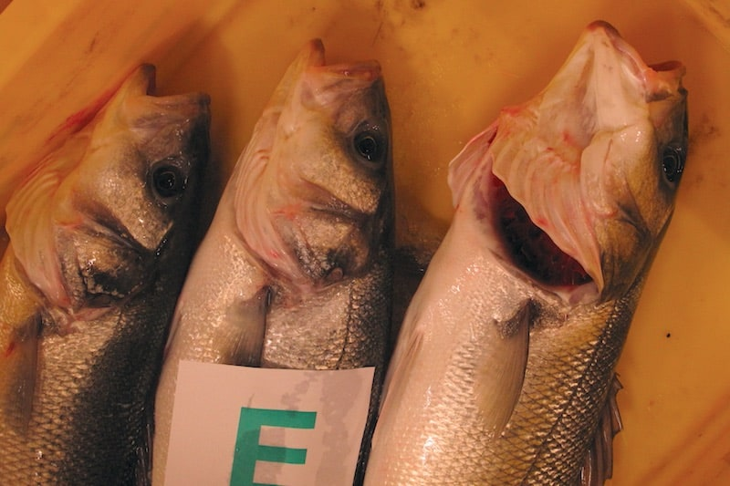 Worst year ever for French bass liners