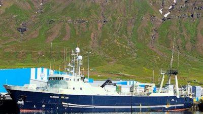 Best ever trip for Norðfjörður trawler