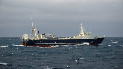 Blængur heads for Barents Sea after poor redfish season