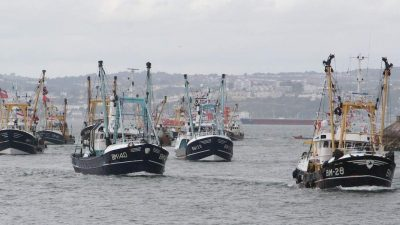 Government support rolled out for English fishing