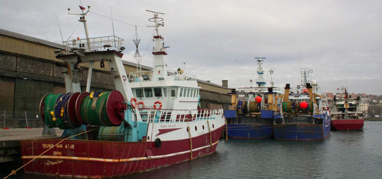 EUFA looks to post-Brexit future for fishing