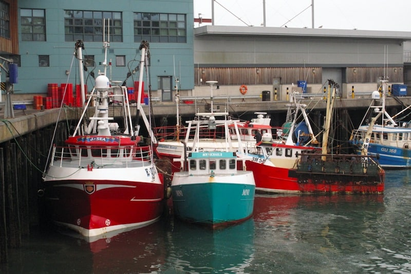 English fishing vessels sought for discards trials