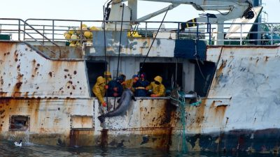 Combined IUU vessel list to tackle illegal fishing