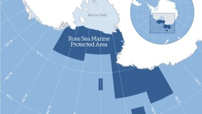 Toothfish and krill harvesters welcome Ross Sea MPA