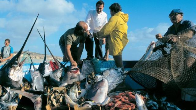 New FAO declaration good news for fishermen