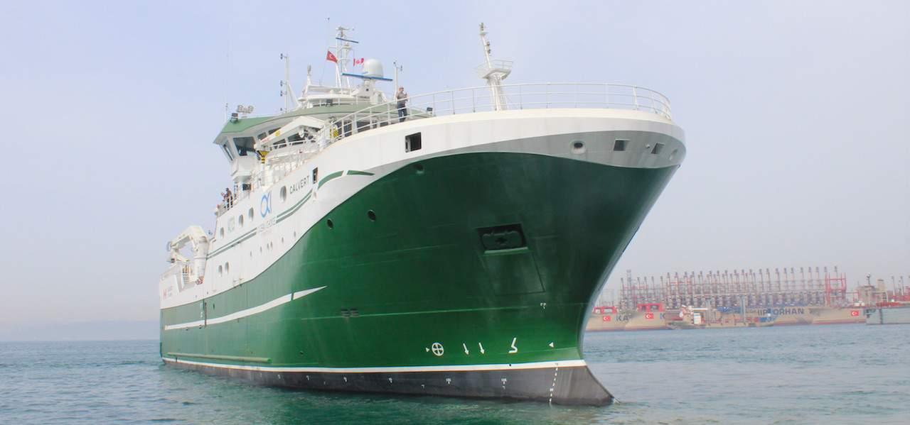 Ocean Choice's new Calvert docks in St Johns