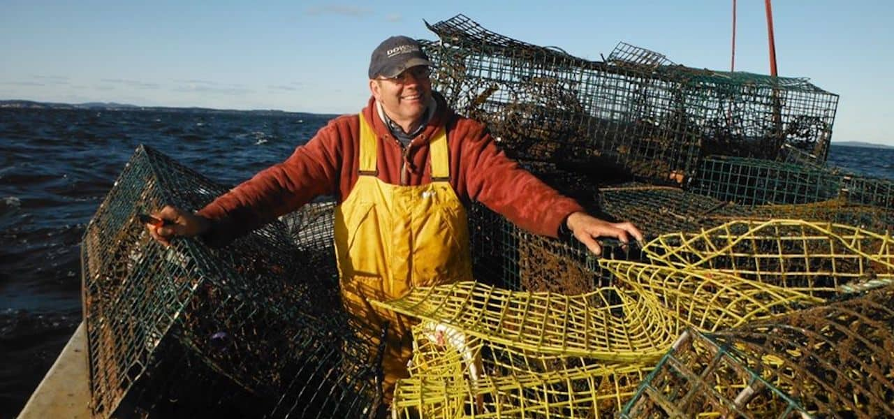 $8.3 million fund to clean up oceans of ghost fishing gear