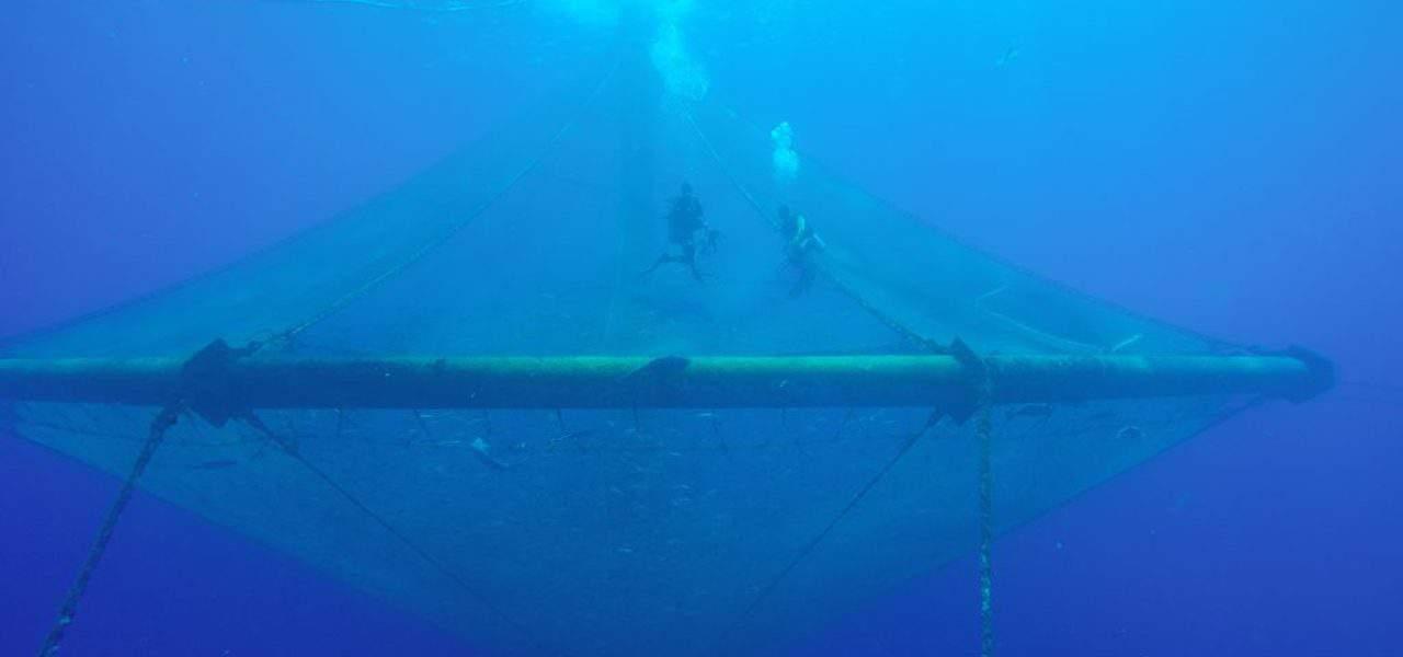 Canada's Ocean Supercluster opens $29M Ocean Aware Project