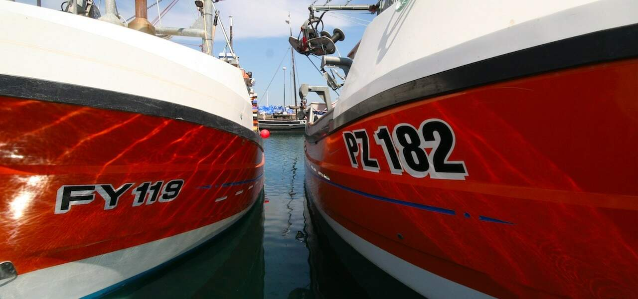 Sustainable & Cornish – New Cornwall-wide seafood celebration launches