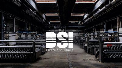 DSI establishes Russian subsidiary