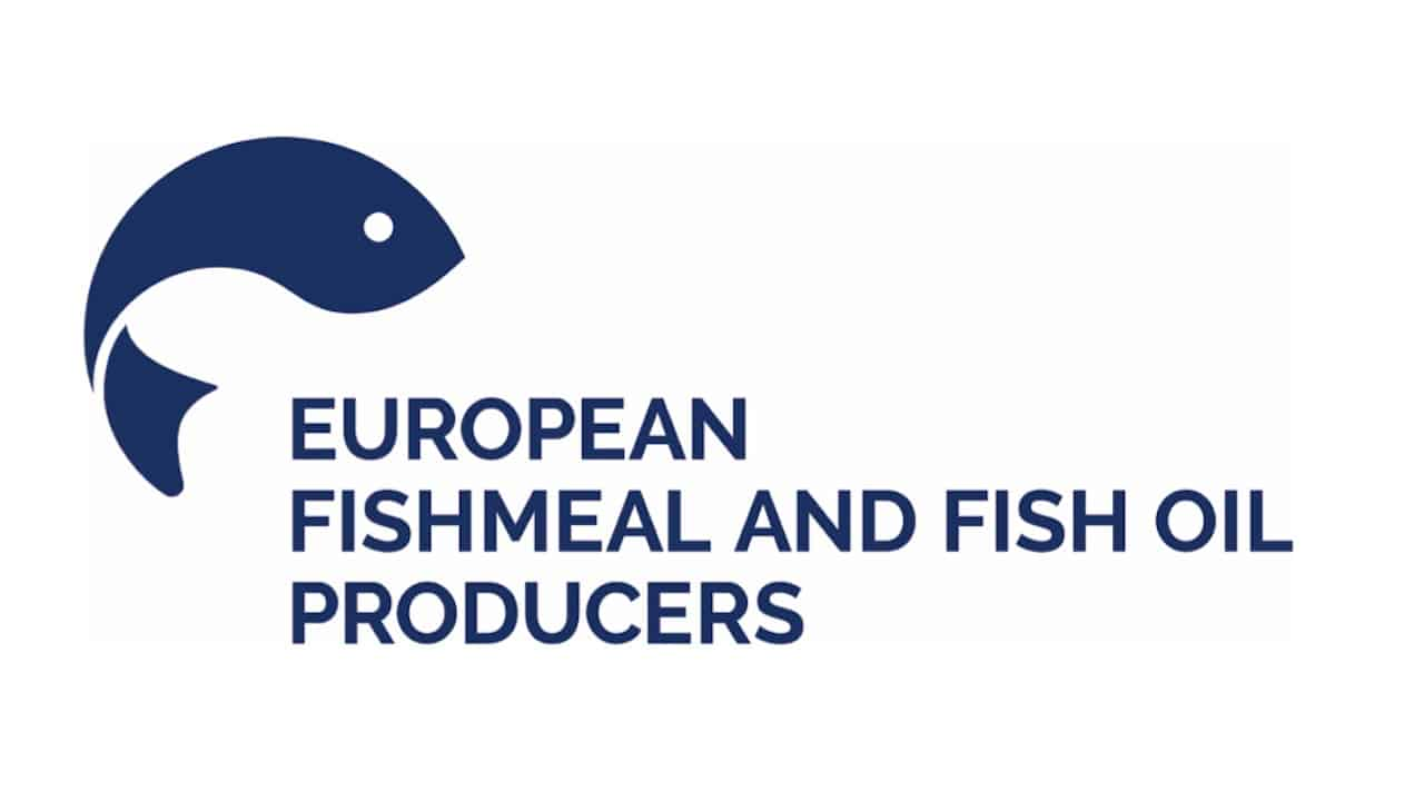 Read more about the article New and old faces on the EFFOP board