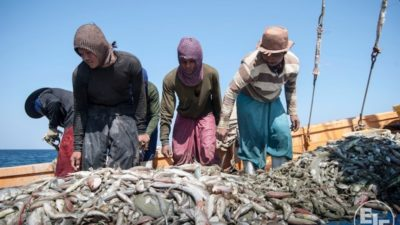 First Asian nation to ratify Work in Fishing Convention