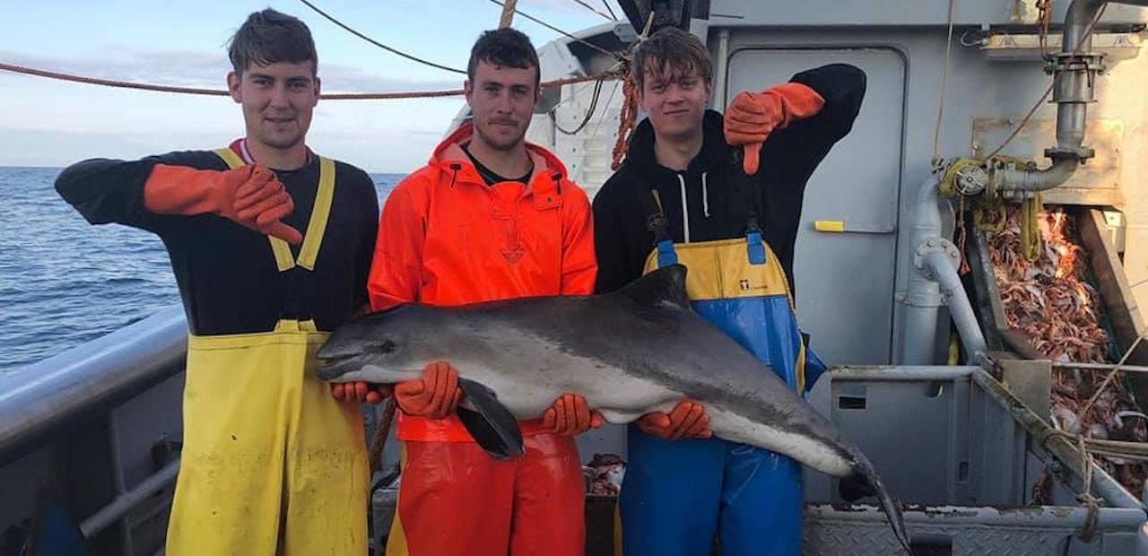EMK: North Sea crisis
