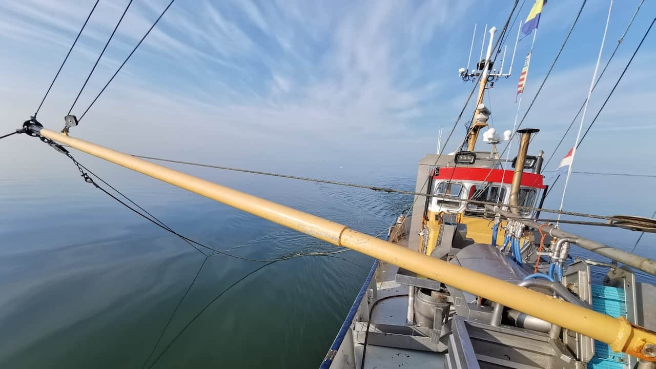 Read more about the article Dutch fishermen plan Saturday demonstration