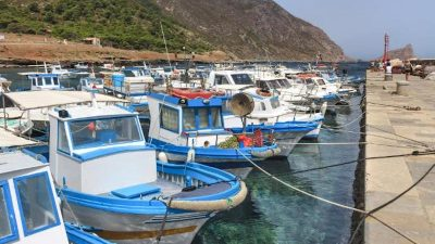 Increased opportunities for Mediterranean and Black Sea small-scale fishing