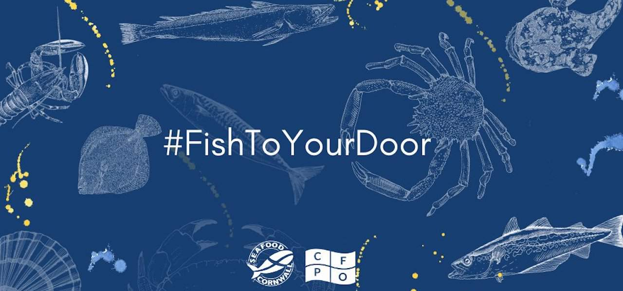Fish To Your Door launches #NHSFishFridays – 50% off for Cornish NHS heroes