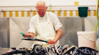Baltic fishermen stunned by EU eel ban proposal