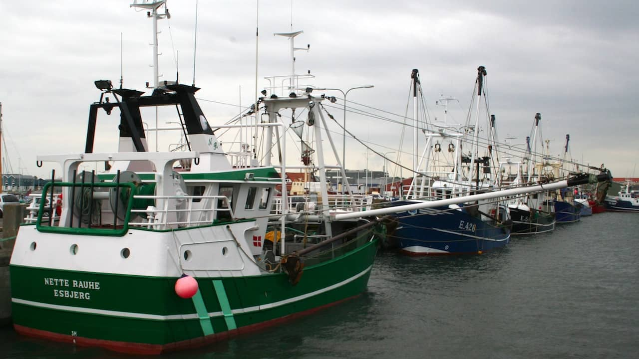 Read more about the article New thinking on Danish fishing