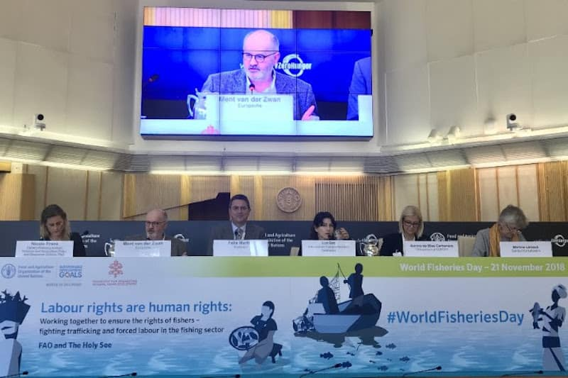 World Fisheries Day dedicated to secure decent work in the fishing sector