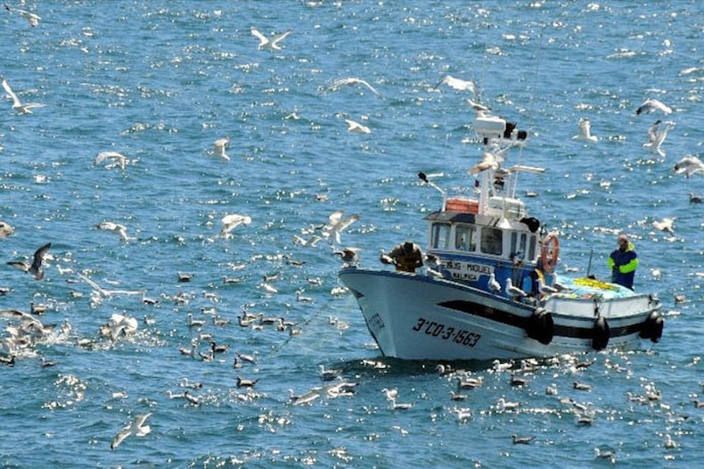EU fisheries fund to meet the industry's needs