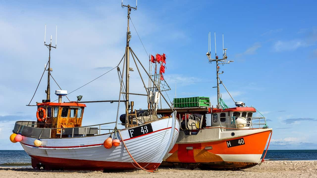 Read more about the article The troubled waters of Baltic fishing