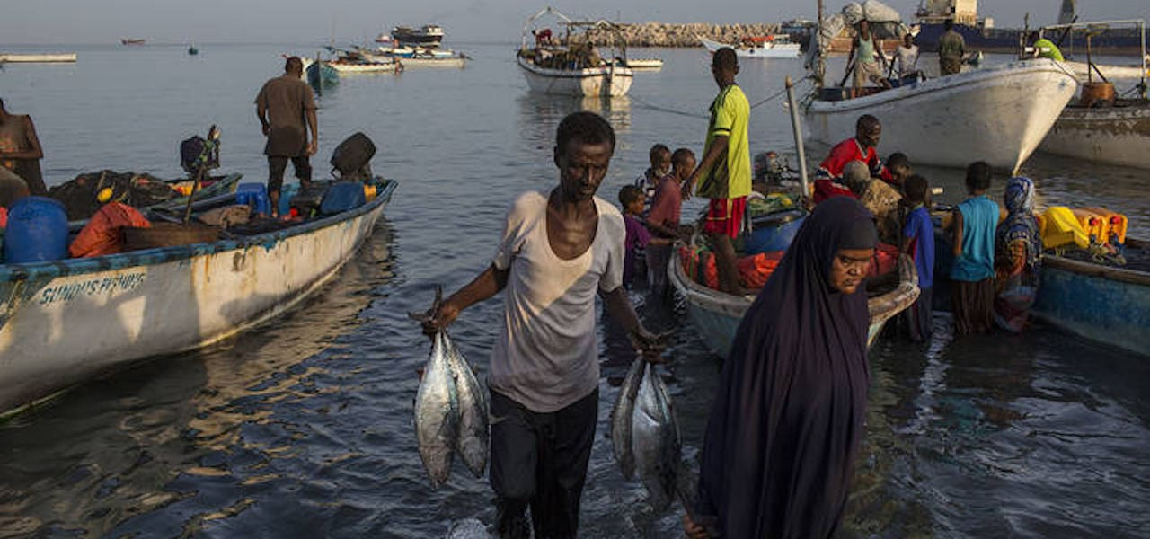 €40 million to boost sustainable fisheries in Africa, the Caribbean and the Pacific