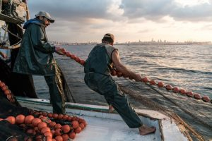 The State of Mediterranean and Black Sea Fisheries report identified areas of concern. Image: FAO - @ Fiskerforum