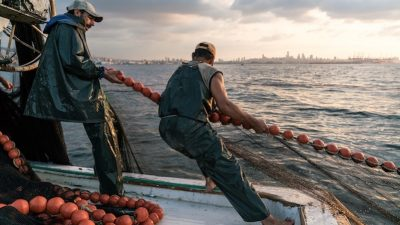 Report raises hopes for Mediterranean and Black Sea fisheries