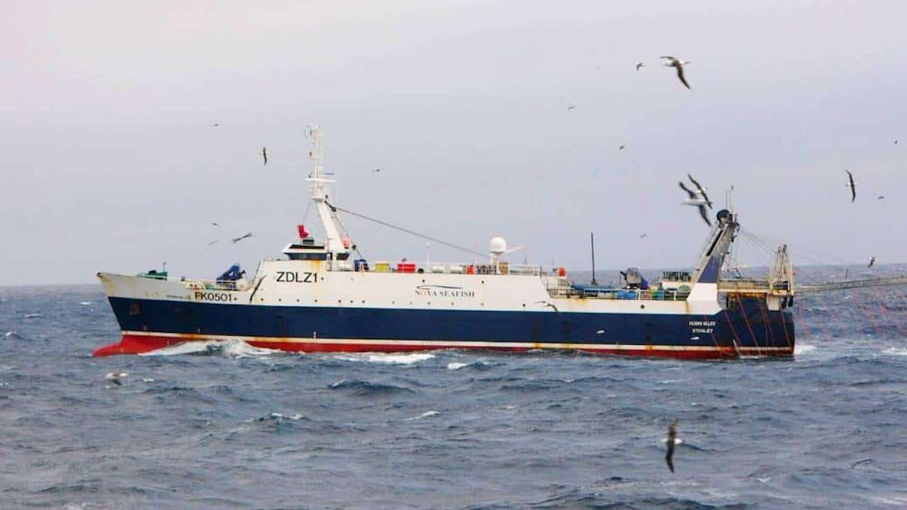 New Falklands joint venture