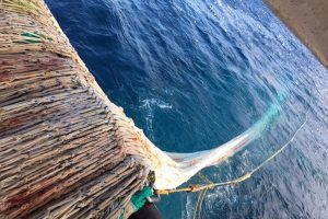SAhooting away on board Polar Amaroq - @ Fiskerforum