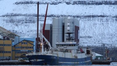 Faroese blue whiting quota set
